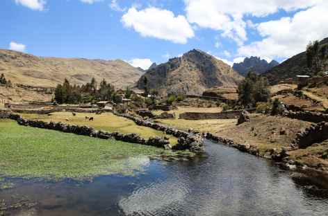 Hauteurs de Paru Paru - Pérou -