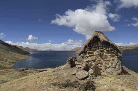 Cordillère Vilcanota, sur les bords de la lagune Sibinacocha - Pérou -