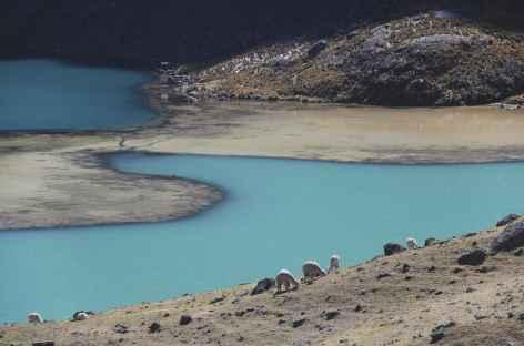 Cordillère Vilcanota, jeu de couleurs vers la lagune Comercocha - Pérou -