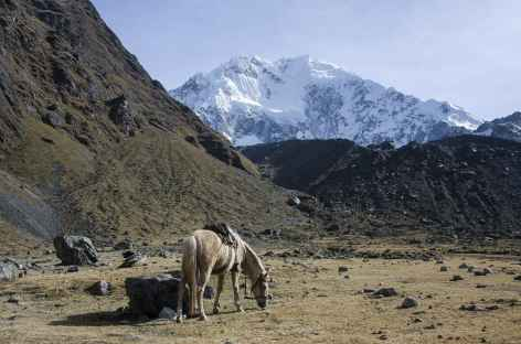 Notre camp au pied du Salcantay - Pérou -