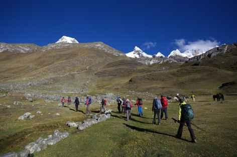 Entre les alpages de Huayhuash et la lagune Viconga - Pérou -