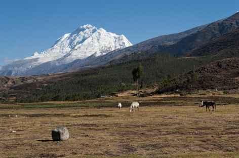 Marche face au Huascaran - Pérou -