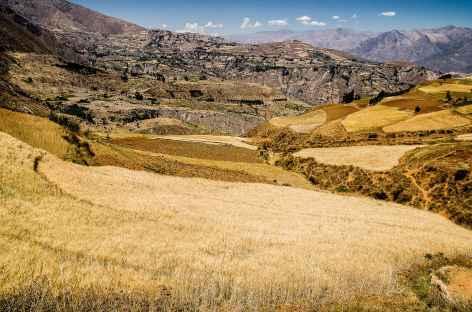 Les piemonts cultivés de la Cordillère Blanche - Pérou -