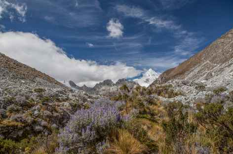 Descente bucolique vers cebollapampa - Pérou -