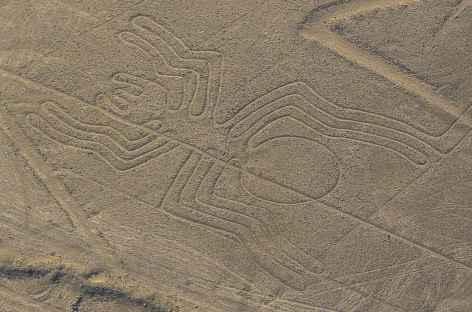 Les mystérieux géoglyphes de la civilisation de Nazca (survol en option) - Pérou -