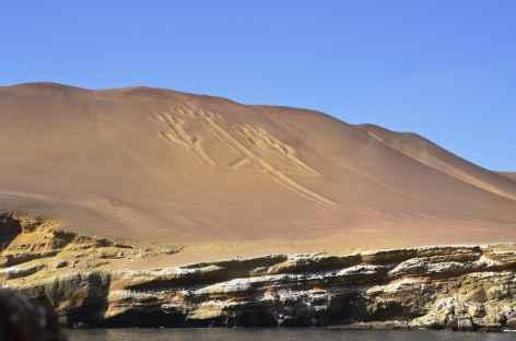 Le fameux trident sur l'une des îles Ballestas - Pérou -