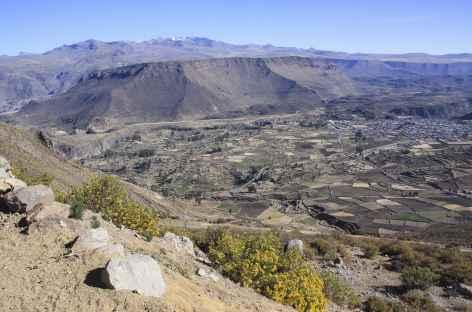 Vue sur Chivay depuis le col de Patapampa - Pérou -