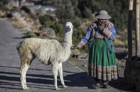 Rencontre au canyon de Colca - Pérou -