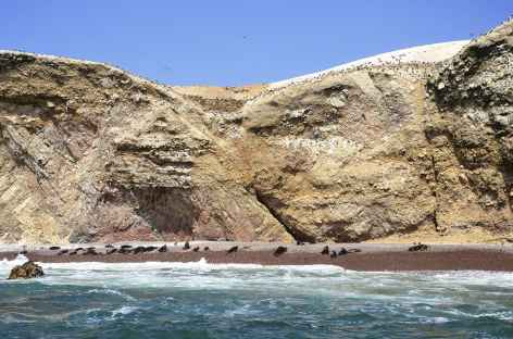 Balade en bateau dans les îles Ballestas - Pérou  -