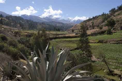 Descente dans la vallée de Huaraz - Pérou -