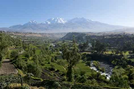 Balade dans le canyon de Colca - Pérou -