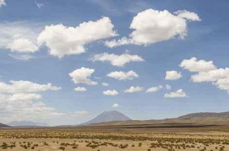 L'altiplano entre Arequipa et Chivay - Pérou -