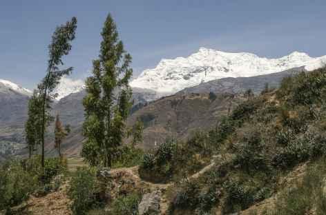 Cordillères Noire et Blanche - Pérou -