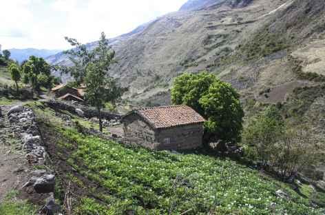 Les premières maisons du gros village de Colcabamba -