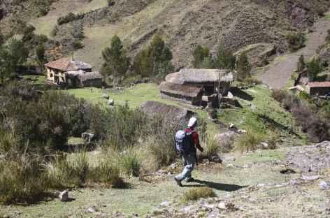 Descente dans la belle vallée cultivée d'Ingenio -
