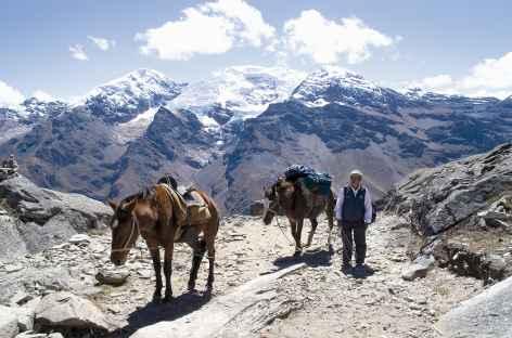 Vue sur les Milluacocha depuis le col d'Osoruri -