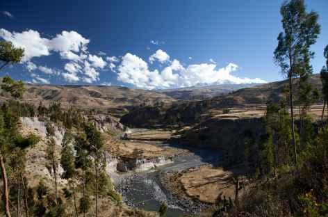 Terrasses cultivées, volcans enneigés et rivière Colca - Pérou - Pérou -