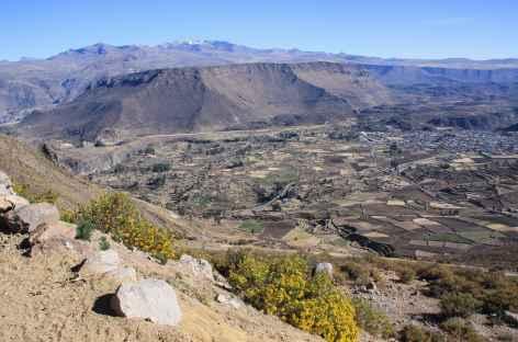 Vue sur le canyon de Colca depuis le col de Patapampa (4900 m) - Pérou -