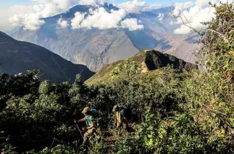 Montée au col Choquequirao (3290 m) - Pérou -