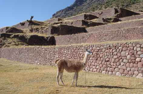 Le site inca d'Huchuy Qosqo - Pérou -