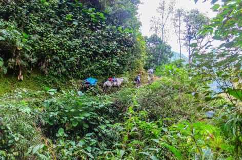 A l'approche d'Espiritu Pampa - Pérou -