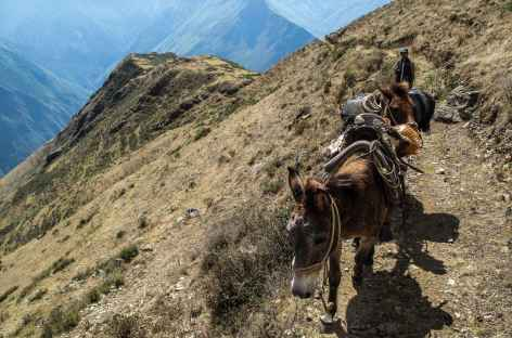 Descente vers le canyon de l'Apurimac - Pérou -