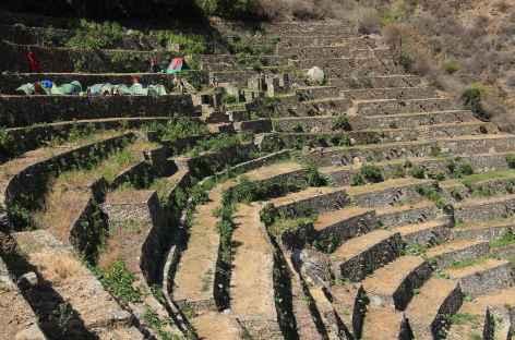Entre Choquequirao, les belles terrasses de de Pinchahuniyoc - Pérou -