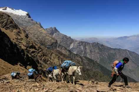 Arrivée au col San Juan (4120 m) - Pérou -