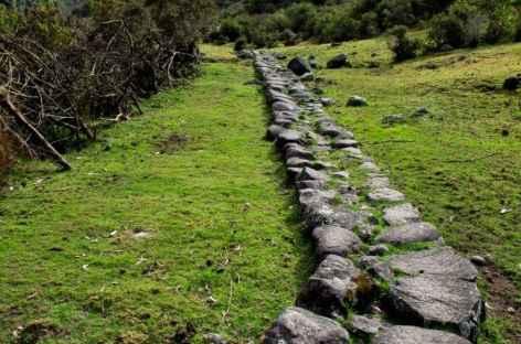 Chemin Inca lors du trek dans la Cordillère Vilcabamba - Pérou -