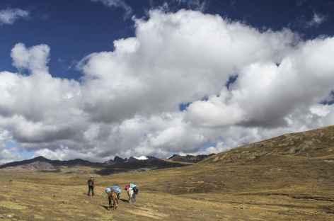 Dans les vastes pâturages vers l'Abra Chimboya - Pérou -