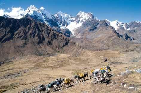Montée au col Mesapata - Pérou -