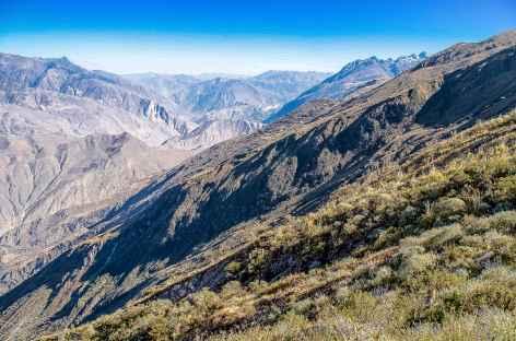 Vue sur la Cordillère Noire entre Hualcayan et Wiscash - Pérou -