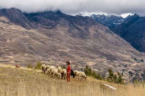 Bergère entre Jiutush et Chacas - Pérou -
