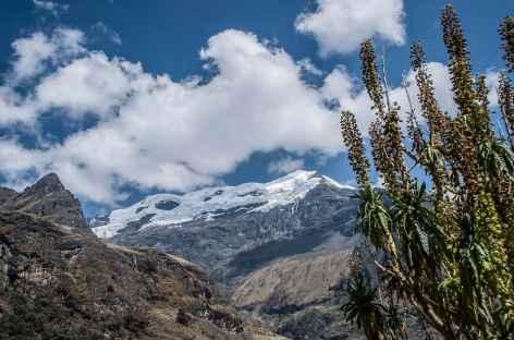 Entre Juitush et Rinconada - Pérou -
