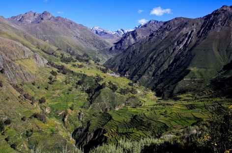 Vallée du rio Canete - Pérou -