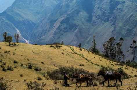 Début du trek au-dessus du canyon de l'Apurimac - Pérou -