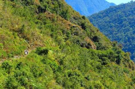 Marche vers Vista Alegre - Pérou -