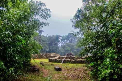 Le site Espiritu Pampa en pleine jungle tropicale - Pérou -