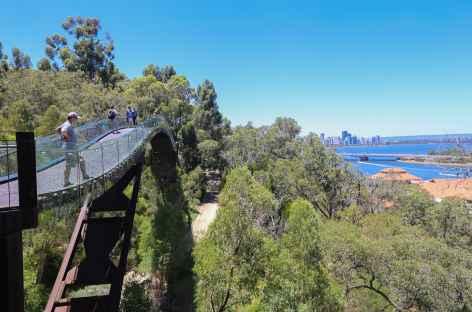 Le jardin botanique de Kings Park - Perth - Australie -