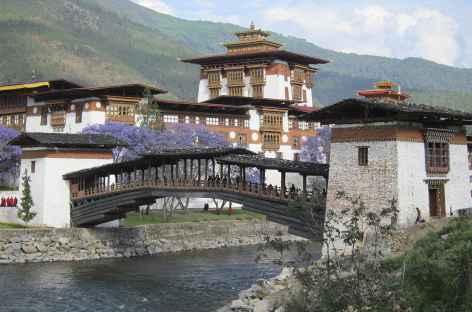 ¨Punukha - Bhoutan -