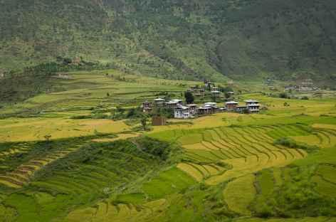 Paysage des vallées  - Bhoutan -