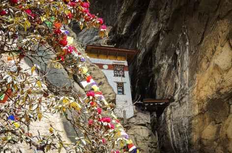 En arrivant à Taktsang - Bhoutan -