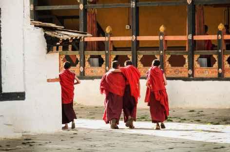 Moines au dzong de Paro - Bhoutan  -