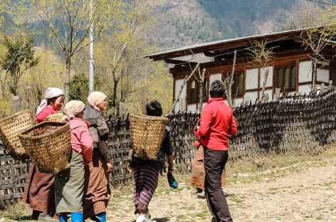 Rencontres sur le sentier - Bhoutan -