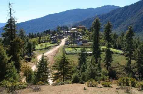 Vallée de Phobjika - Bhoutan -