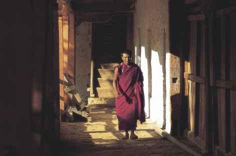 Moine - Bhoutan -