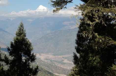 Vue sur le Jomolhari depuis le Chele La  - Bhoutan -