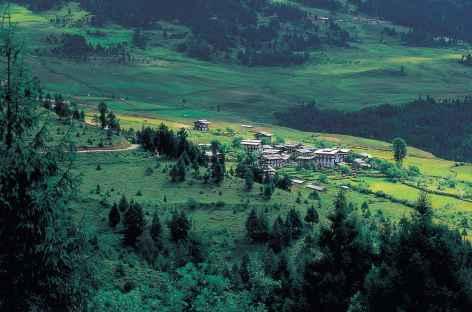 Paysage du Bhoutan au printemps -