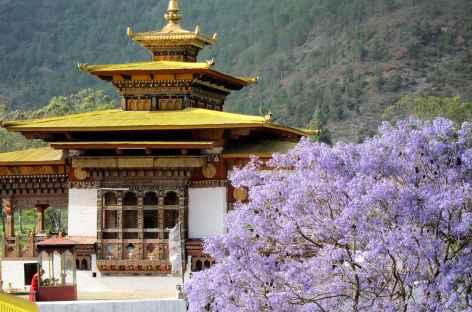 Arrivée au Dzong de Punakha  - Bhoutan -