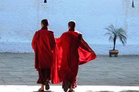Moines dans la cour du Monastère  - Bhoutan -